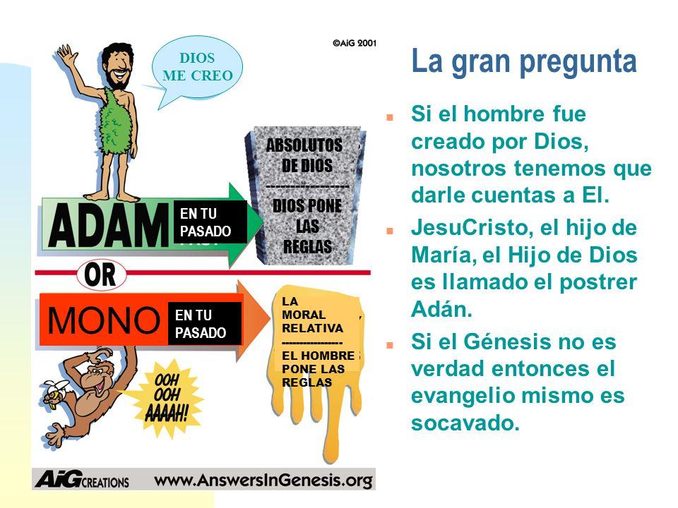 La gran pregunta n Si el hombre fue creado por Dios, nosotros tenemos que darle cuentas a El. n JesuCristo, el hijo de María, el Hijo de Dios es llama