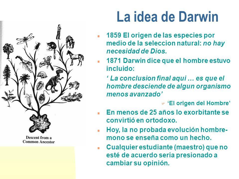La idea de Darwin n 1859 El origen de las especies por medio de la seleccion natural: no hay necesidad de Dios. n 1871 Darwin dice que el hombre estuv