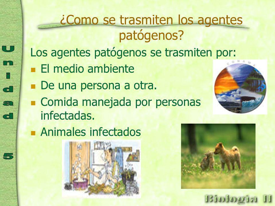 ¿Como se trasmiten los agentes patógenos.