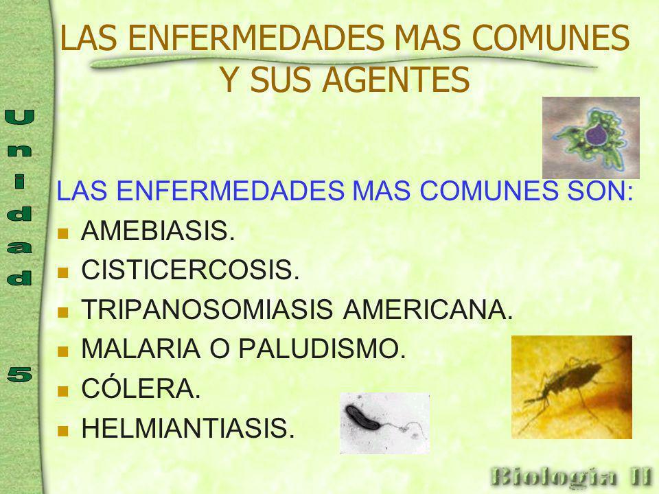 Enfermedades parásitas Las enfermedades parásitas, son aquellas causadas por parásitos alojados en el organismo.