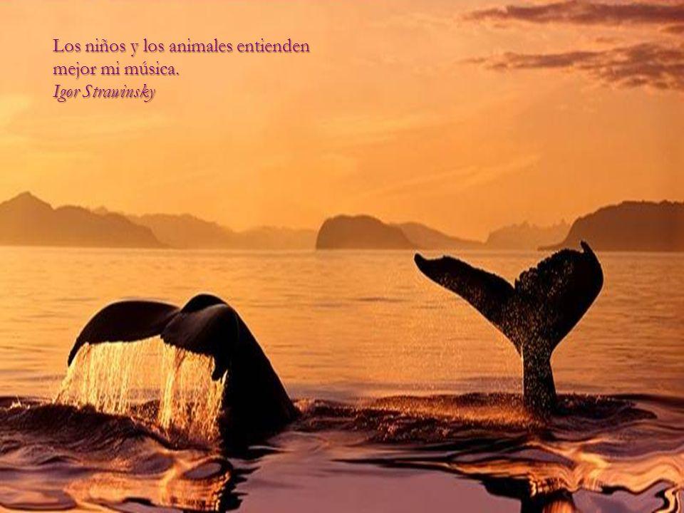 El amor por todas las criaturas vivientes es el más noble atributo del hombre. Charles Darwin Charles Darwin
