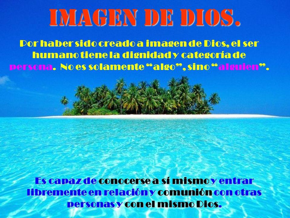 Por haber sido creado a imagen de Dios, el ser humano tiene la dignidad y categoría de persona.