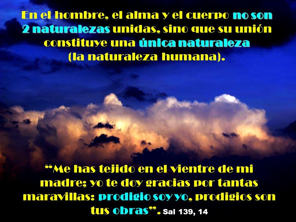 no son 2 naturalezas única naturaleza En el hombre, el alma y el cuerpo no son 2 naturalezas unidas, sino que su unión constituye una única naturaleza (la naturaleza humana).