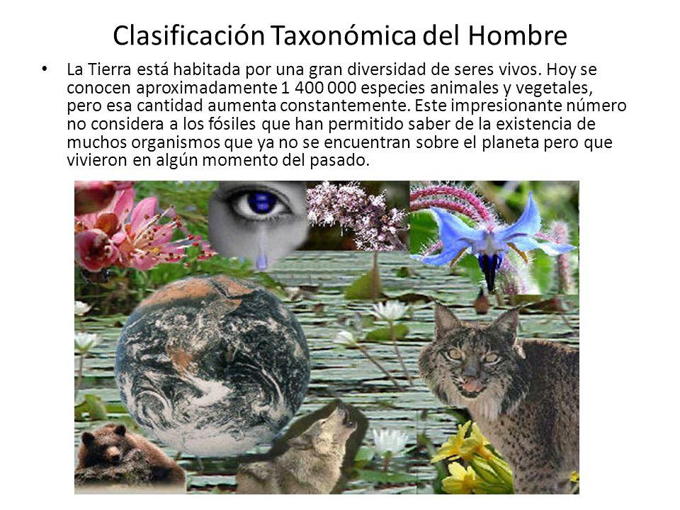 Clasificación Taxonómica del Hombre La Tierra está habitada por una gran diversidad de seres vivos.