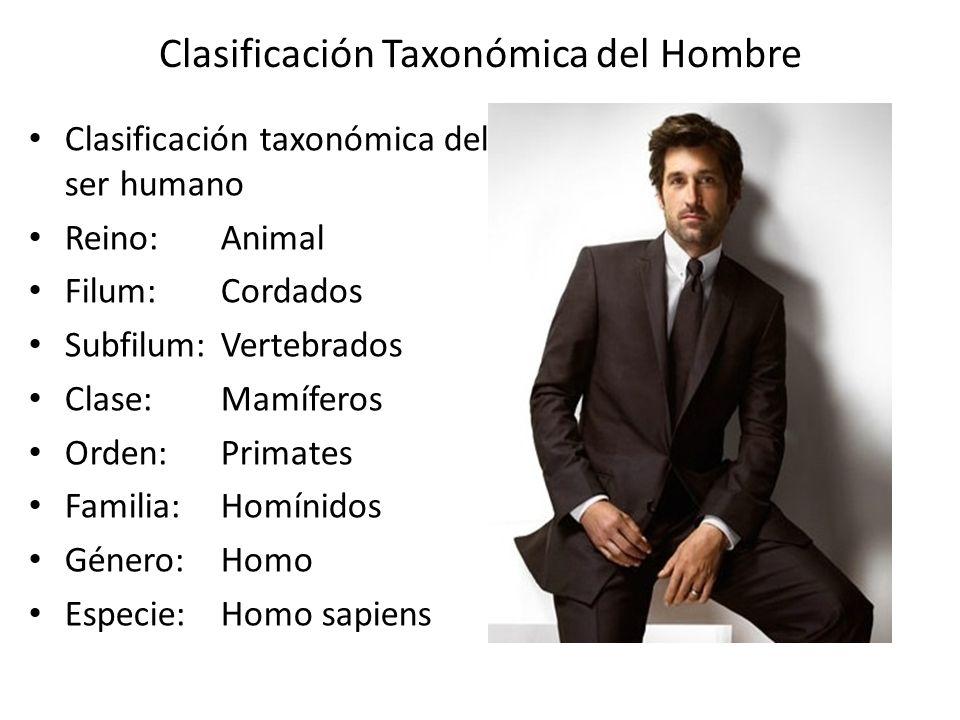 Clasificación taxonómica del ser humano Reino:Animal Filum:Cordados Subfilum:Vertebrados Clase:Mamíferos Orden:Primates Familia:Homínidos Género:Homo Especie:Homo sapiens