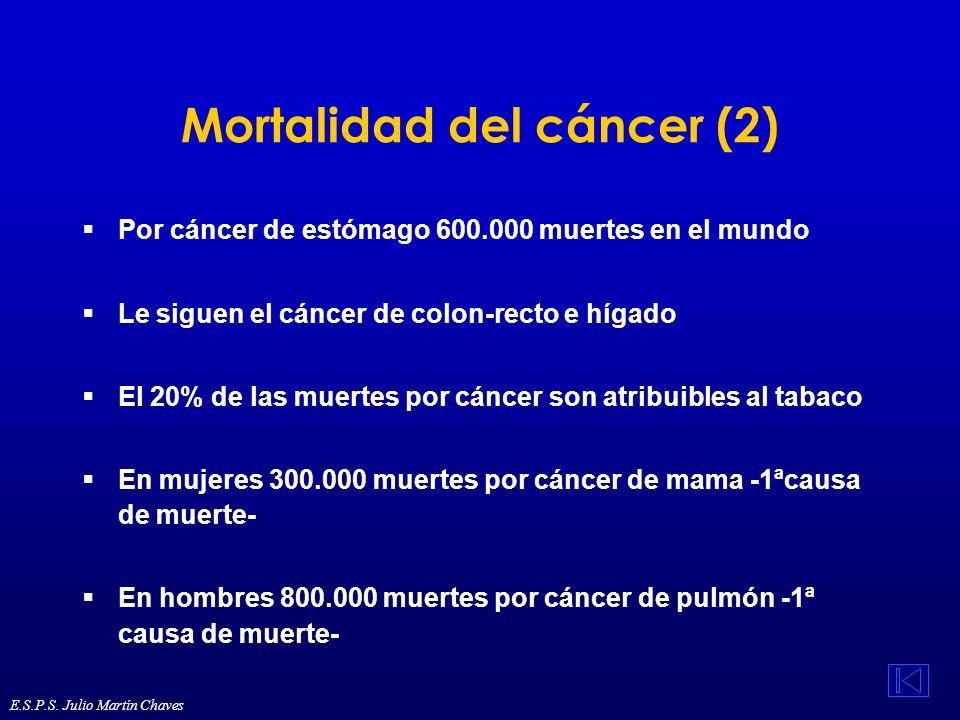 Mortalidad del cáncer (2) Por cáncer de estómago 600.000 muertes en el mundo Le siguen el cáncer de colon-recto e hígado El 20% de las muertes por cán