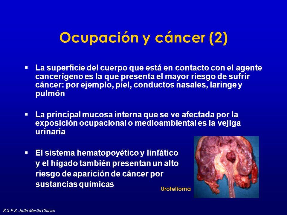 Ocupación y cáncer (2) La superficie del cuerpo que está en contacto con el agente cancerígeno es la que presenta el mayor riesgo de sufrir cáncer: po