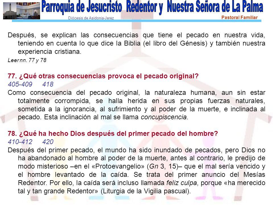 Diócesis de Asidonia-Jerez Pastoral Familiar Después, se explican las consecuencias que tiene el pecado en nuestra vida, teniendo en cuenta lo que dic