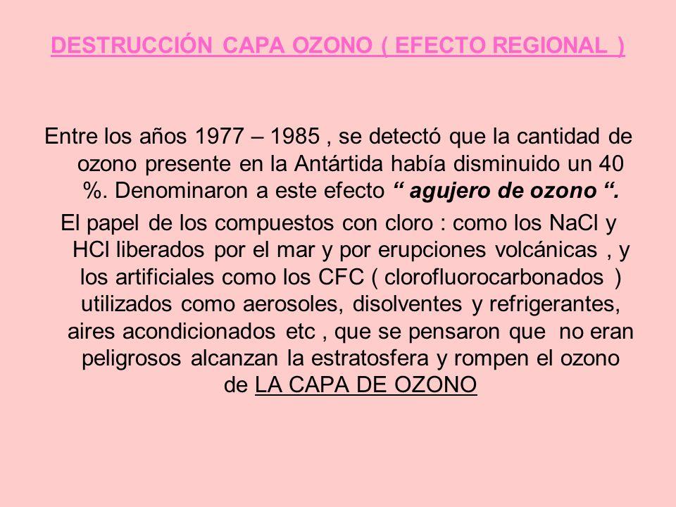 DESTRUCCIÓN CAPA OZONO ( EFECTO REGIONAL ) Entre los años 1977 – 1985, se detectó que la cantidad de ozono presente en la Antártida había disminuido u