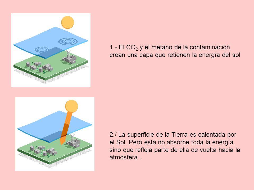 1.- El CO 2 y el metano de la contaminación crean una capa que retienen la energía del sol 2./ La superficie de la Tierra es calentada por el Sol. Per