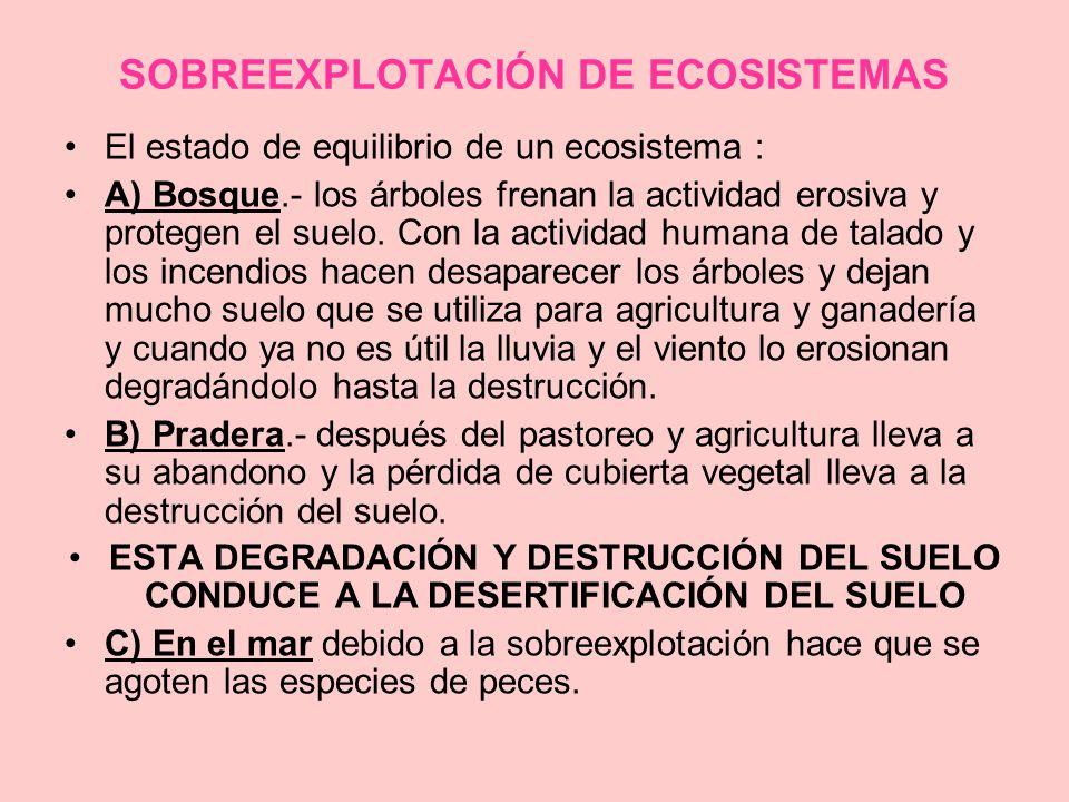 SOBREEXPLOTACIÓN DE ECOSISTEMAS El estado de equilibrio de un ecosistema : A) Bosque.- los árboles frenan la actividad erosiva y protegen el suelo. Co