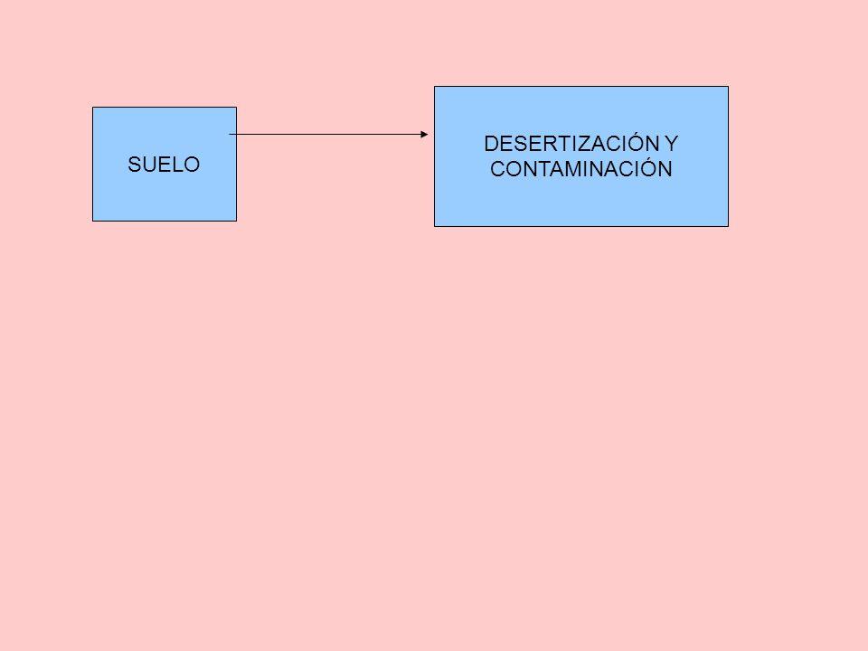 SUELO DESERTIZACIÓN Y CONTAMINACIÓN