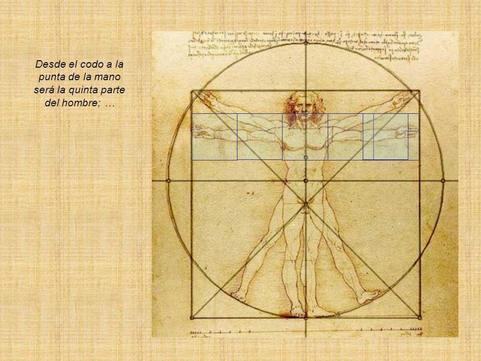 La intersección de la mano sobre la diagonal del cuadrado es el radio de un círculo, cuyo diámetro pasa por el ombligo