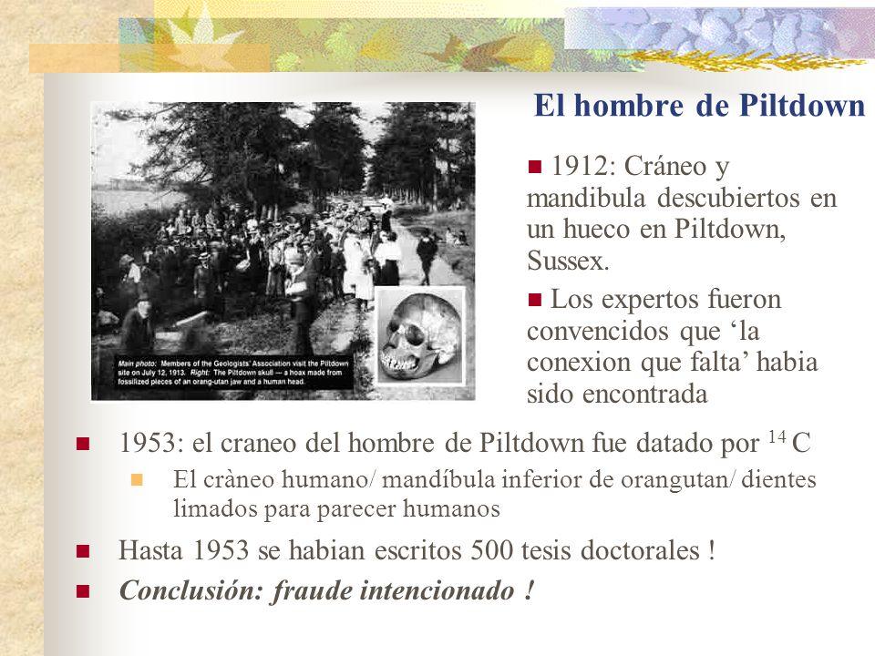El hombre de Piltdown 1953: el craneo del hombre de Piltdown fue datado por 14 C El cràneo humano/ mandíbula inferior de orangutan/ dientes limados para parecer humanos Hasta 1953 se habian escritos 500 tesis doctorales .