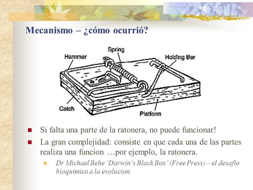 Mecanismo – ¿cómo ocurrió? Si falta una parte de la ratonera, no puede funcionar! La gran complejidad: consiste en que cada una de las partes realiza