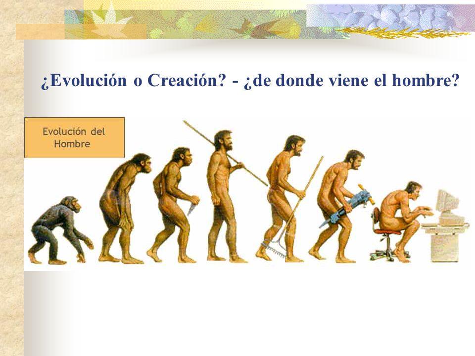 ¿Evolución o Creación? - ¿de donde viene el hombre?
