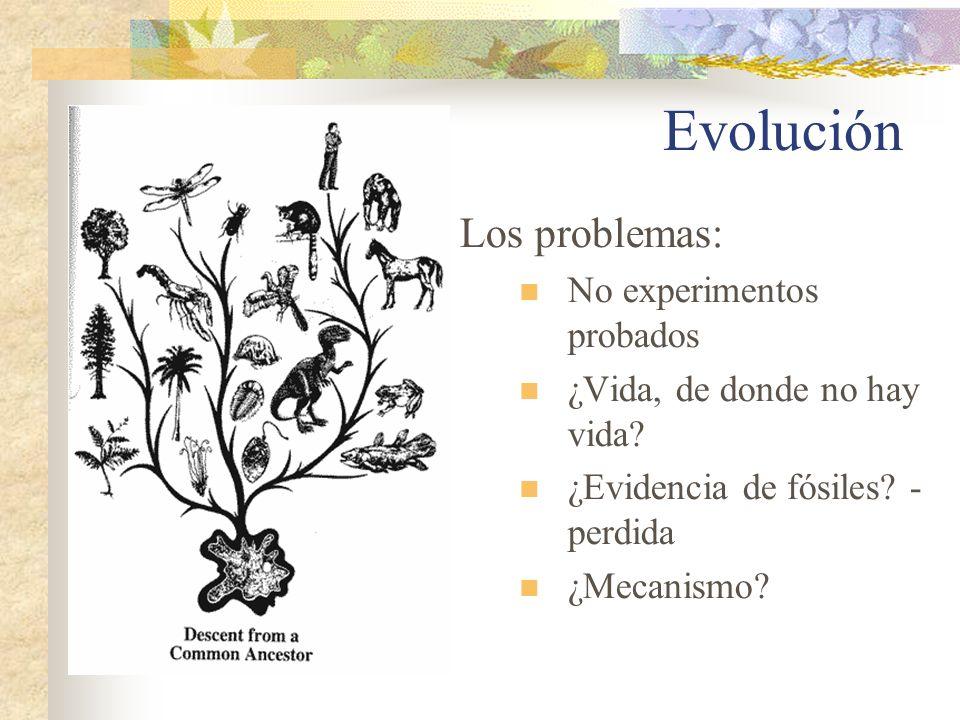 Evolución Los problemas: No experimentos probados ¿Vida, de donde no hay vida? ¿Evidencia de fósiles? - perdida ¿Mecanismo?