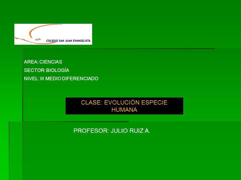 AREA: CIENCIAS SECTOR: BIOLOGÍA NIVEL: III MEDIO DIFERENCIADO CLASE: EVOLUCIÓN ESPECIE HUMANA PROFESOR: JULIO RUIZ A.