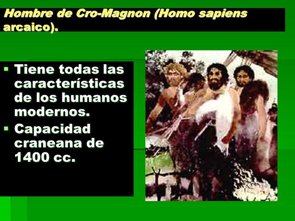 Hombre de Cro-Magnon (Homo sapiens arcaico). Tiene todas las características de los humanos modernos. Tiene todas las características de los humanos m