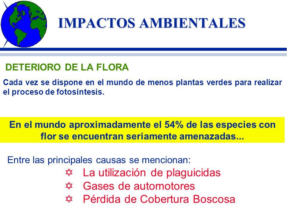 ALTERACION DEL EQUILIBRIO AMBIENTAL CAUSAS ARTIFICIALES EVOLUCIÓNCULTURAL CRECIMIENTODEMOGRAFICO SISTEMAS ECONOMICOS ECONOMICOS UTILIZACIÓN DE REC. NA