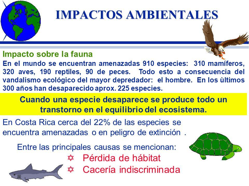 IMPACTOS AMBIENTALES APROVECHAMIENTO FORESTAL Si bien los bosques productivos están disminuyendo rápidamente, su valor potencial en la economía costar