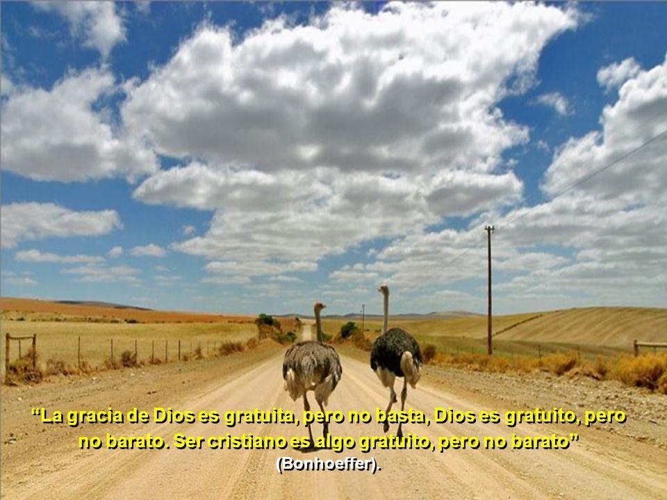 El mundo está lleno de becerros de oro que los hombres adoran y ponen por delante de Dios (Martín Descalzo)