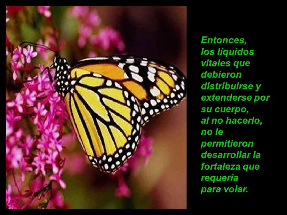 Lo que el hombre no entendía, es que al ayudar a la mariposa, no le permitió que hiciera el gran esfuerzo para atravesar el pequeño agujero.