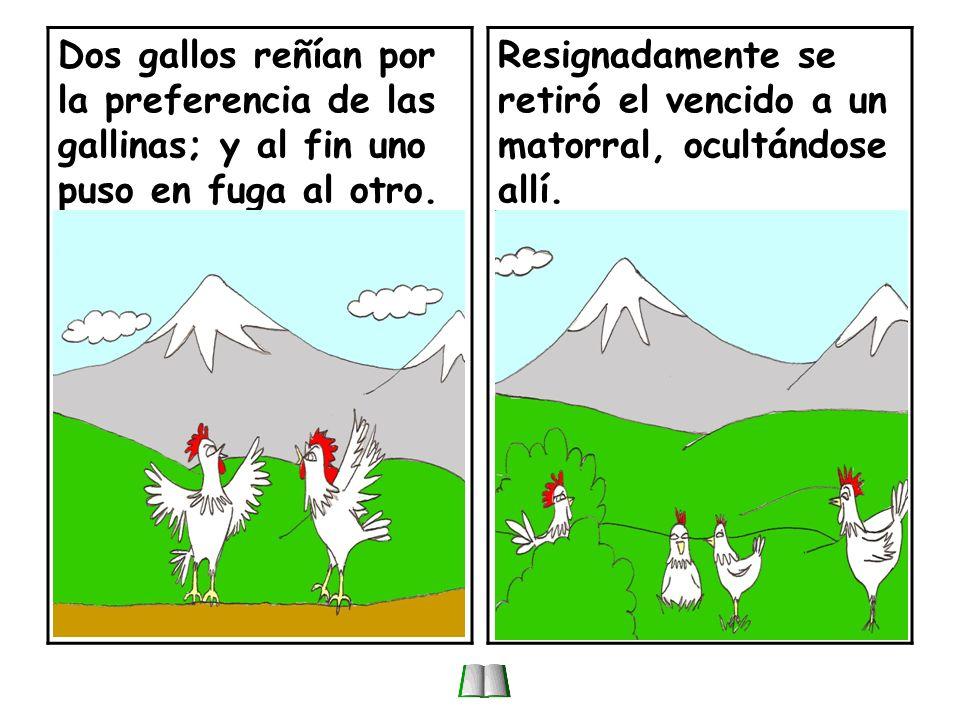 El águila y los gallos.