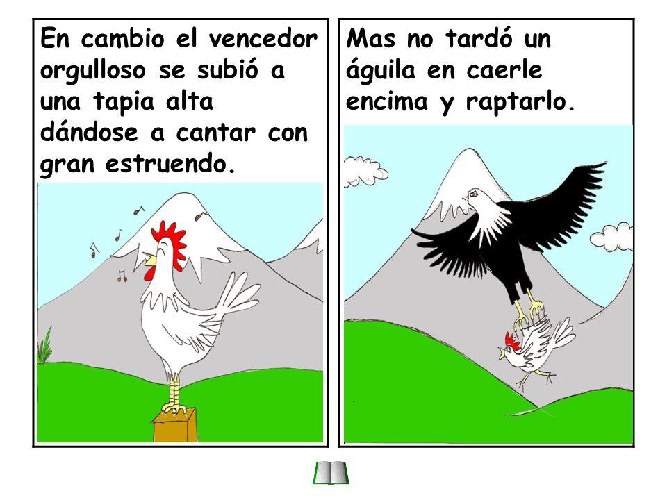 Dos gallos reñían por la preferencia de las gallinas; y al fin uno puso en fuga al otro.