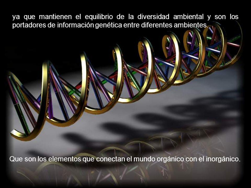 en transferencia horizontal de genes, cumpliendo una función de almacenamiento de información genética y contribuyendo a la dinámica evolutiva del sistema y a su estabilidad,
