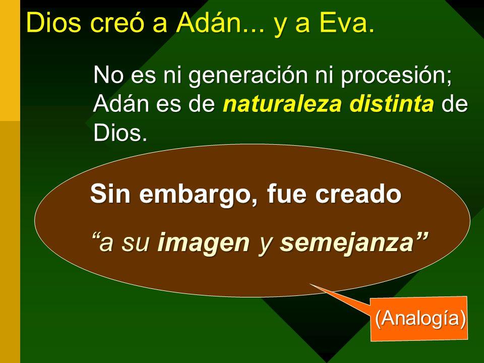 Dios creó a Adán...y a Eva.