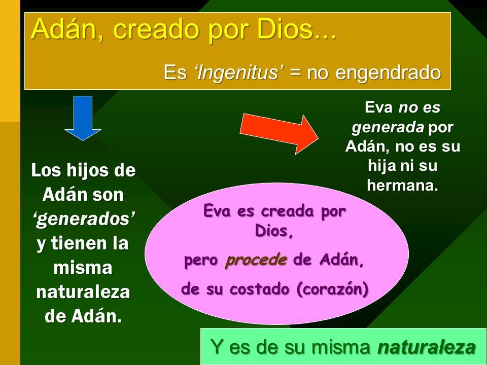 Adán, creado por Dios...