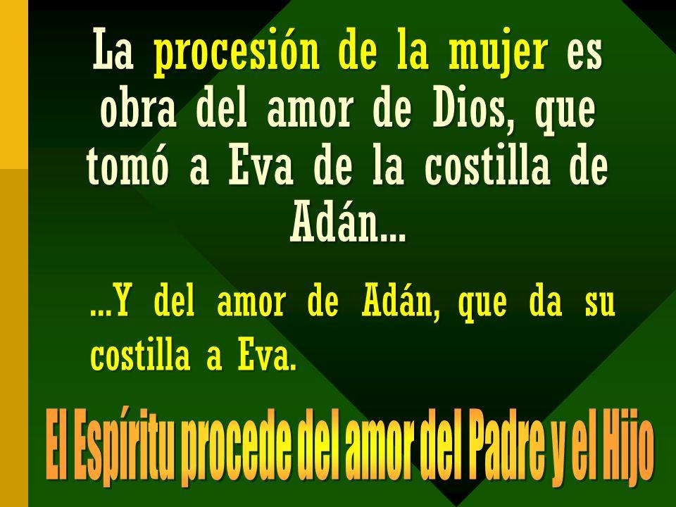 La procesión de la mujer es obra del amor de Dios, que tomó a Eva de la costilla de Adán......Y del amor de Adán, que da su costilla a Eva.