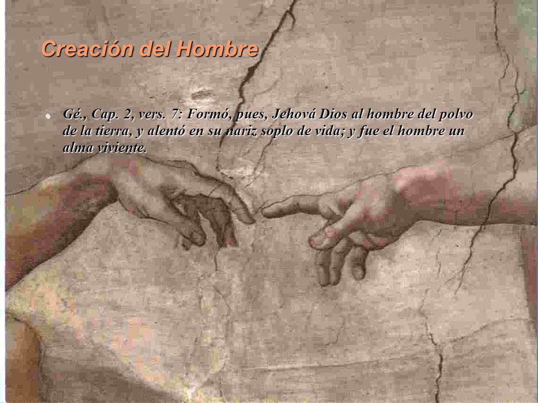 Creación del Hombre Gé., Cap.2, vers.
