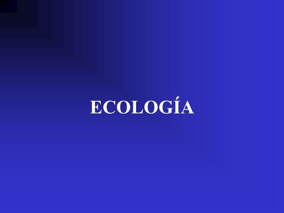 ECOLOGÍA Sucesión - regresión Balance energético individual y colectivo Ética Hobbes (en Dennett, 1992) : Hubo un tiempo, dijo, en que no existía el bien y el mal; la gente vivía en «estado de naturaleza», forzada a participar en la guerra de todos contra todos......Entonces, algunos de ellos se agruparon e hicieron un contrato y, de ese modo, comenzó la sociedad y, con la sociedad, el bien y el mal.