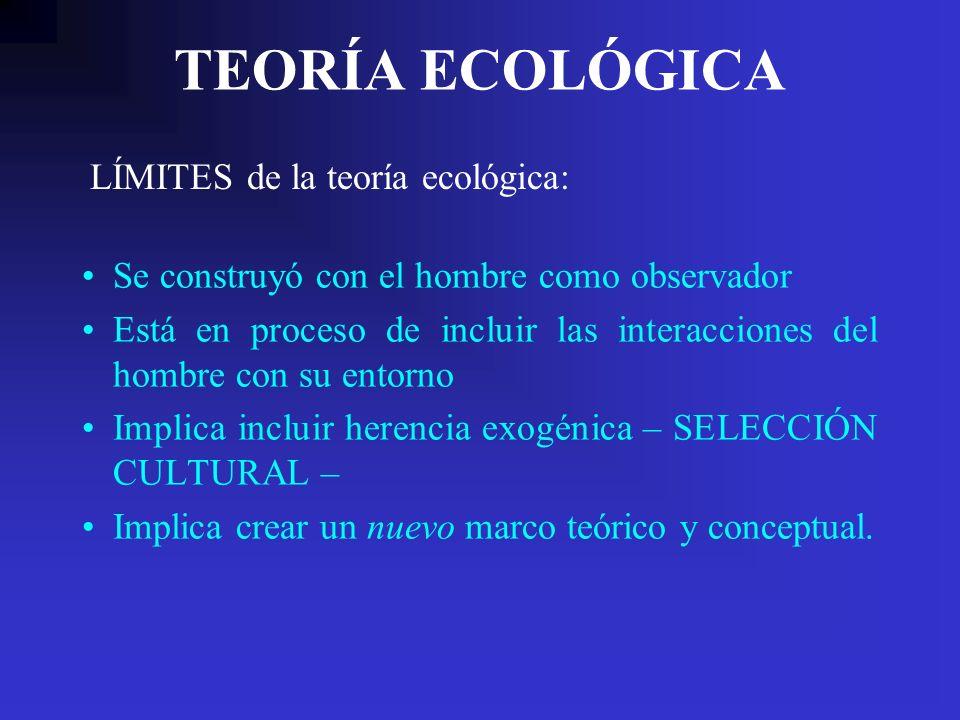 TEORÍA ECOLÓGICA Se construyó con el hombre como observador Está en proceso de incluir las interacciones del hombre con su entorno Implica incluir her