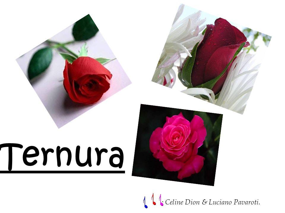 Ternura : Celine Dion & Luciano Pavaroti.