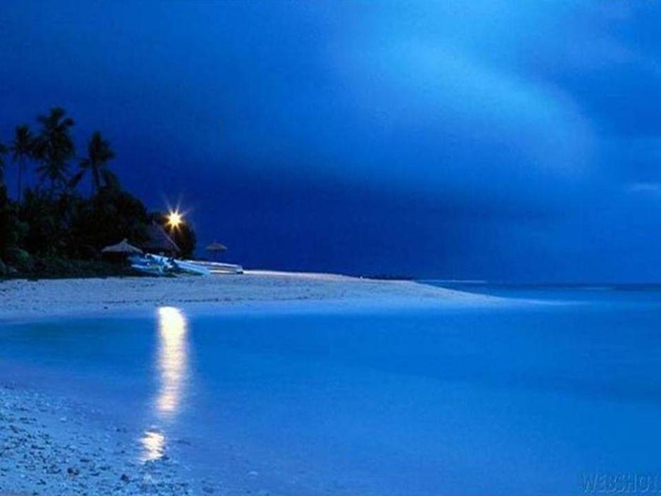 La ternura es el arte de sentir a la persona, al ser humano en su totalidad.