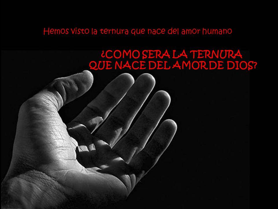 La ternura es eso que … Vitaliza al viejo … Duerme al niño … Y ¡Desarma al hombre!