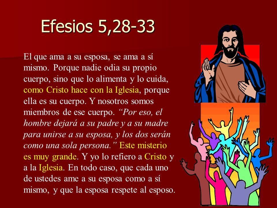 Efesios 5,28-33 El que ama a su esposa, se ama a sí mismo. Porque nadie odia su propio cuerpo, sino que lo alimenta y lo cuida, como Cristo hace con l