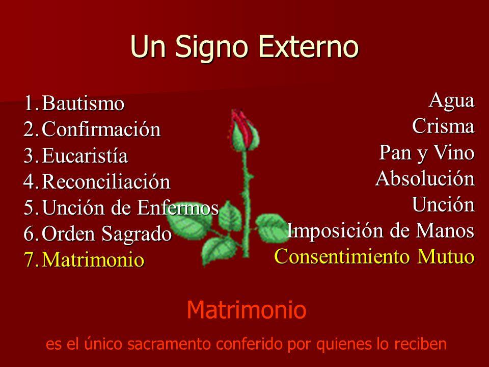 Un Signo Externo 1.Bautismo 2.Confirmación 3.Eucaristía 4.Reconciliación 5.Unción de Enfermos 6.Orden Sagrado 7.Matrimonio AguaCrisma Pan y Vino Absol