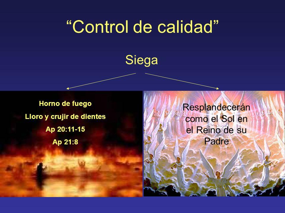 Control de calidad Siega Horno de fuego Lloro y crujir de dientes Ap 20:11-15 Ap 21:8 Resplandecerán como el Sol en el Reino de su Padre