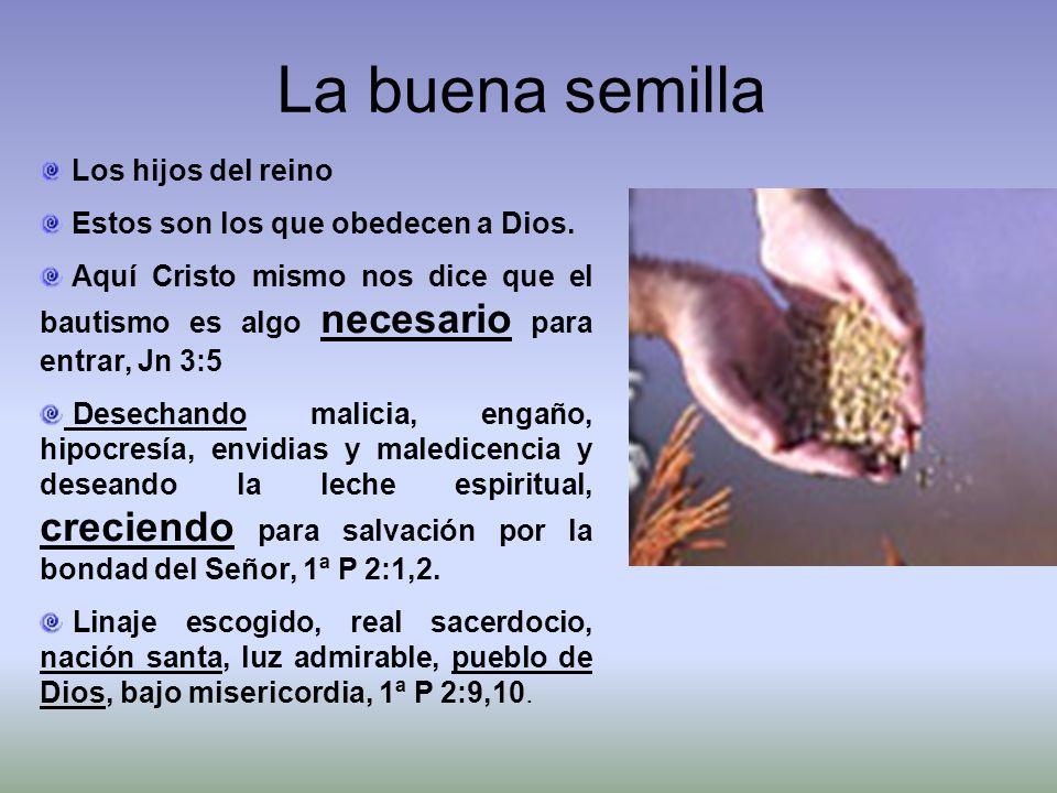 Los hijos del reino Estos son los que obedecen a Dios. Aquí Cristo mismo nos dice que el bautismo es algo necesario para entrar, Jn 3:5 Desechando mal