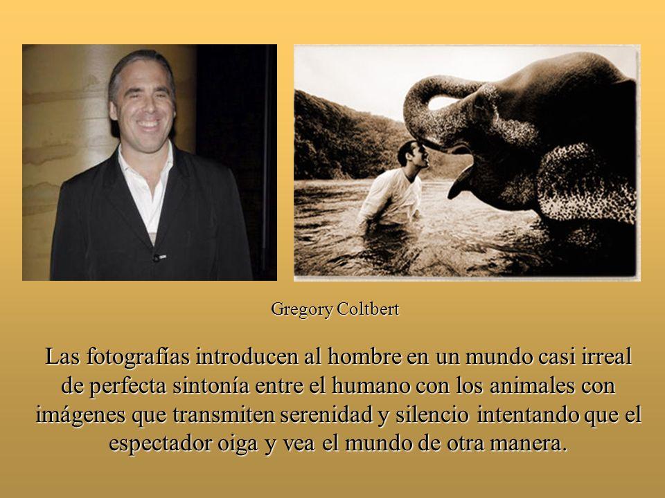 2008 ZOCALO DE LA CIUDAD DE MEXICO 19 ENERO – 27 ABRIL