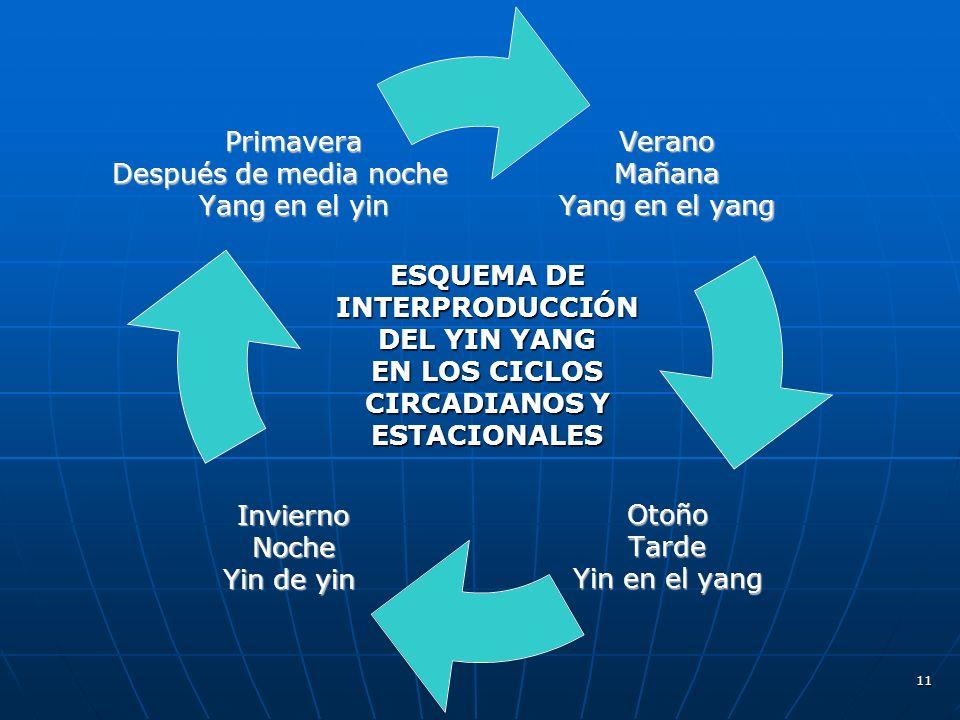 11VeranoMañana Yang en el yang OtoñoTarde Yin en el yang InviernoNoche Yin de yin Primavera Después de media noche Yang en el yin ESQUEMA DE INTERPRODUCCIÓN DEL YIN YANG EN LOS CICLOS CIRCADIANOS Y ESTACIONALES
