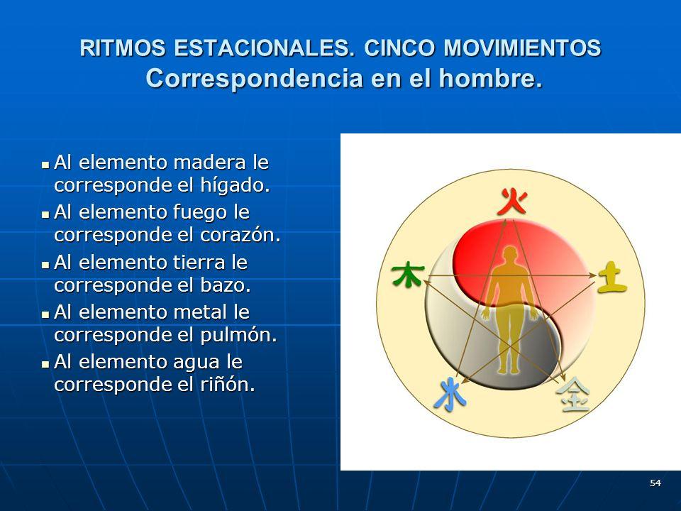 54 RITMOS ESTACIONALES.CINCO MOVIMIENTOS Correspondencia en el hombre.
