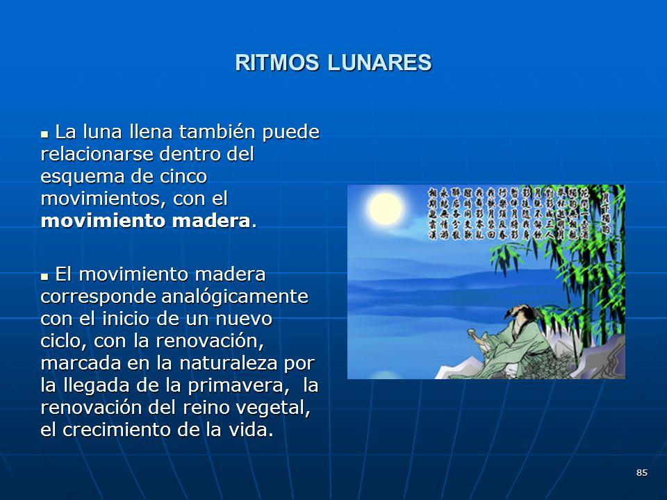85 RITMOS LUNARES La luna llena también puede relacionarse dentro del esquema de cinco movimientos, con el movimiento madera.