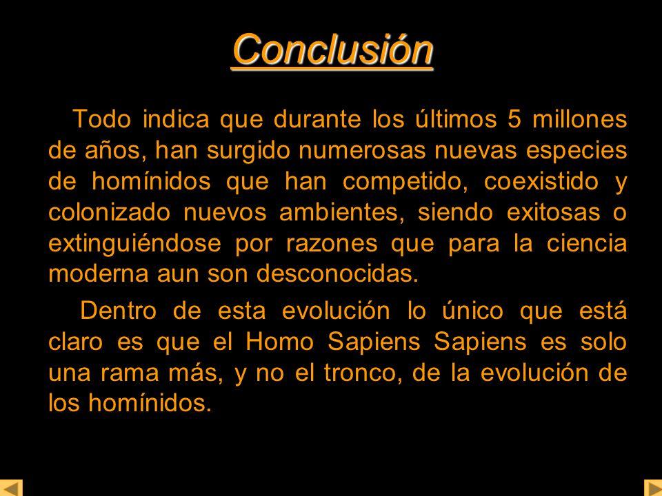 Conclusión Todo indica que durante los últimos 5 millones de años, han surgido numerosas nuevas especies de homínidos que han competido, coexistido y colonizado nuevos ambientes, siendo exitosas o extinguiéndose por razones que para la ciencia moderna aun son desconocidas.