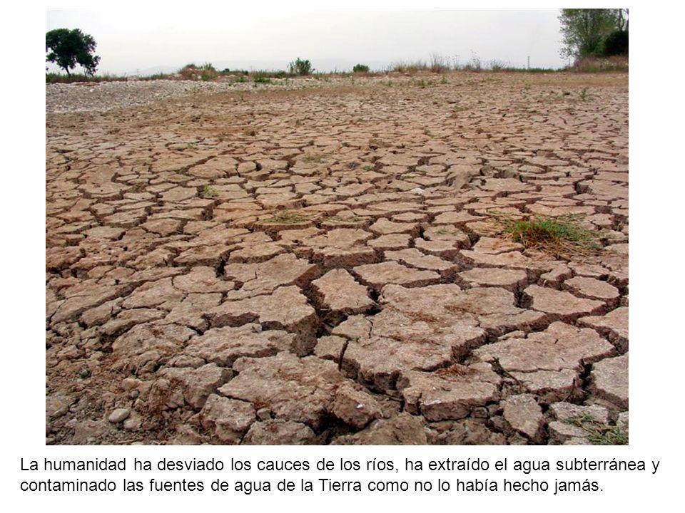 La expropiación y abandono de amplias zonas agrícolas.