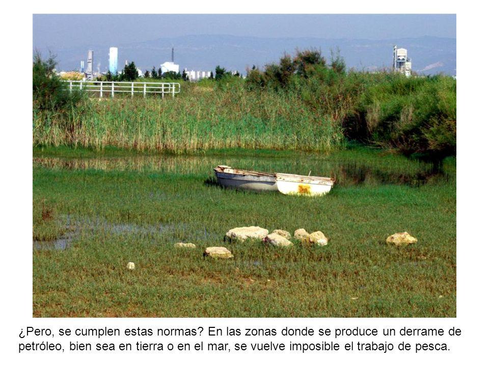 Las instalaciones químicas, incluyen la construcción de plantas de tratamiento de aguas, a fin de permitir la reutilización después de haber reducido la concentración de los contaminantes.